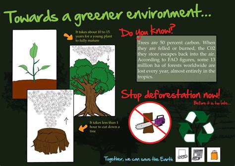 Top 6 Deforestation infographics - Infographics by Graphs