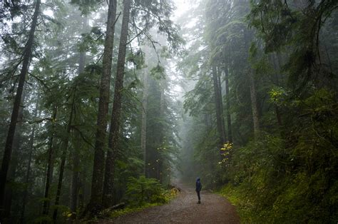 You'll Never Forget This Enchanting Hike Along Oregon's